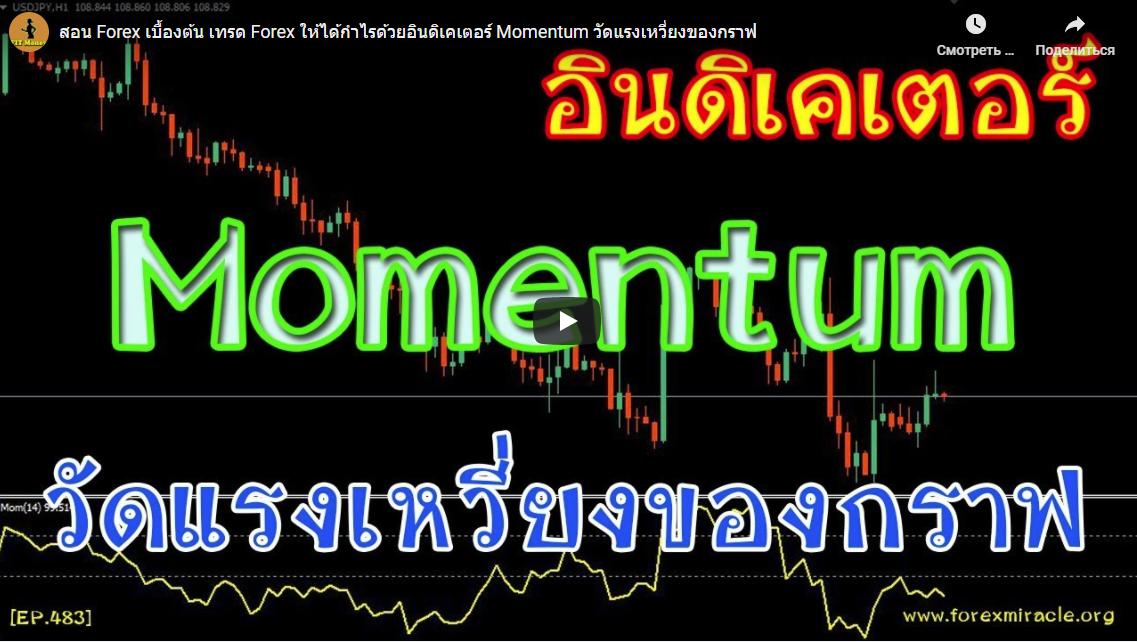 สอน Forex เบื้องต้น เทรด Forex ให้ได้กำไรด้วยอินดิเคเตอร์ Momentum วัดแรงเหวี่ยงของกราฟ|14:53